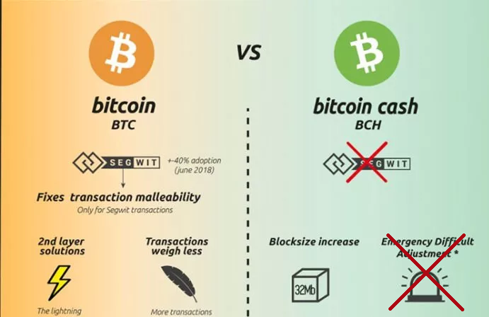 Difference between BTC and BCH